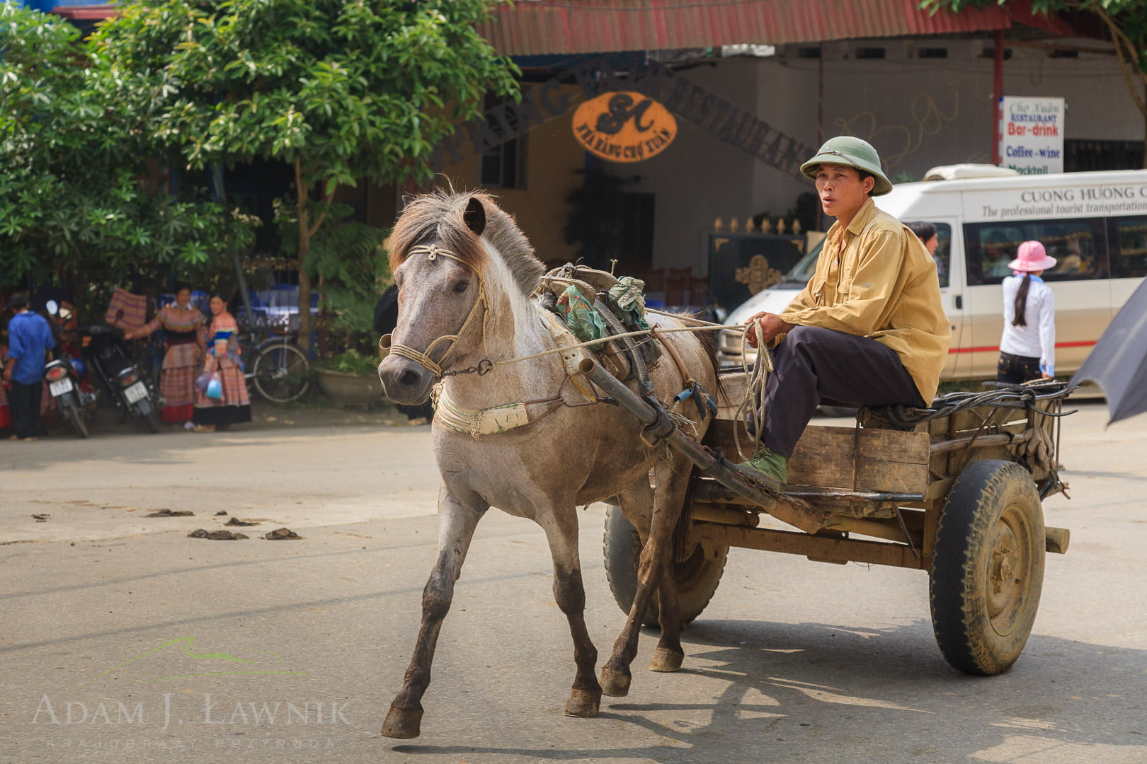 Vietnam 0909-01139C