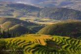 Vietnam 0909-01300C